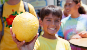 A boy holding a lemon, smiling. Lemon Festival organized by TAVA.